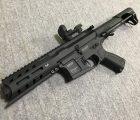 401custom G&G ARP556  ナッツ!